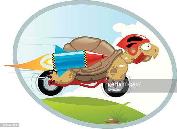 ilustrações, clipart, desenhos animados e ícones de extreme tartaruga - esportes extremos