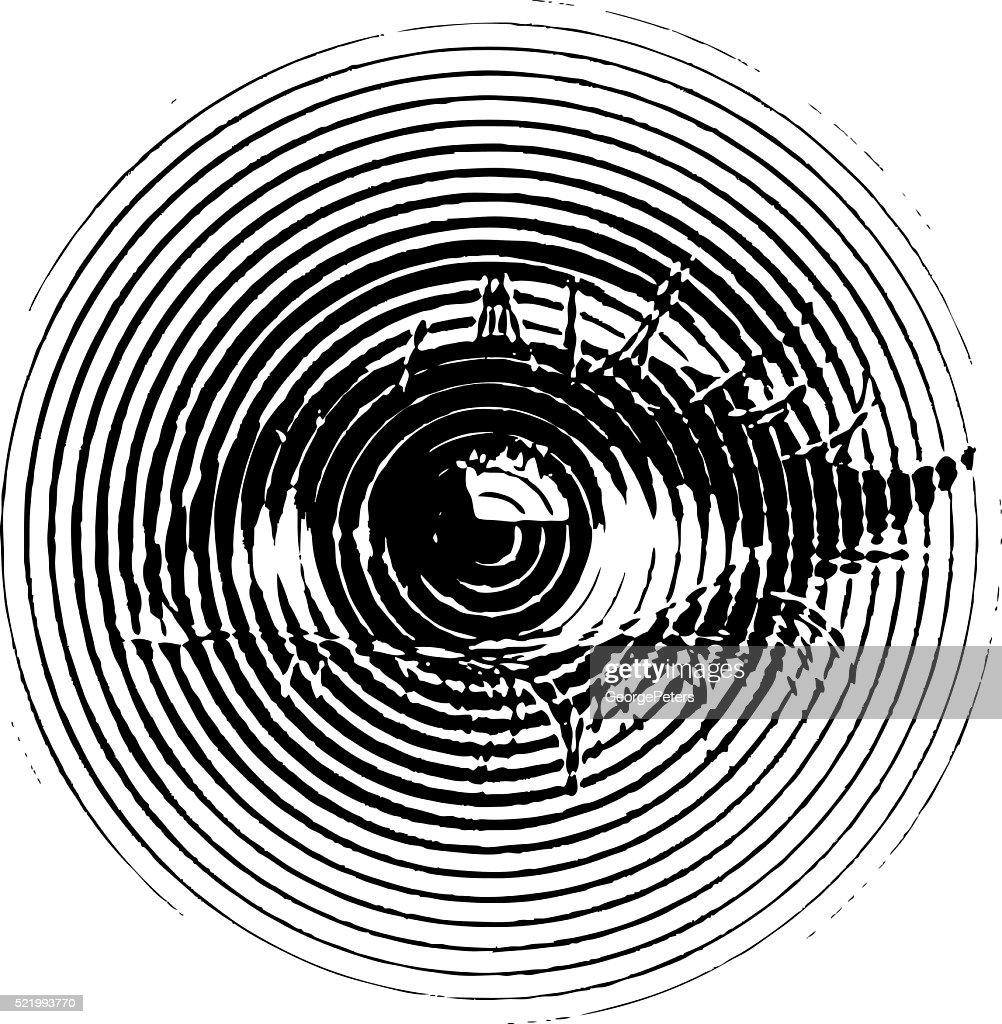 Eye, engraving illustration