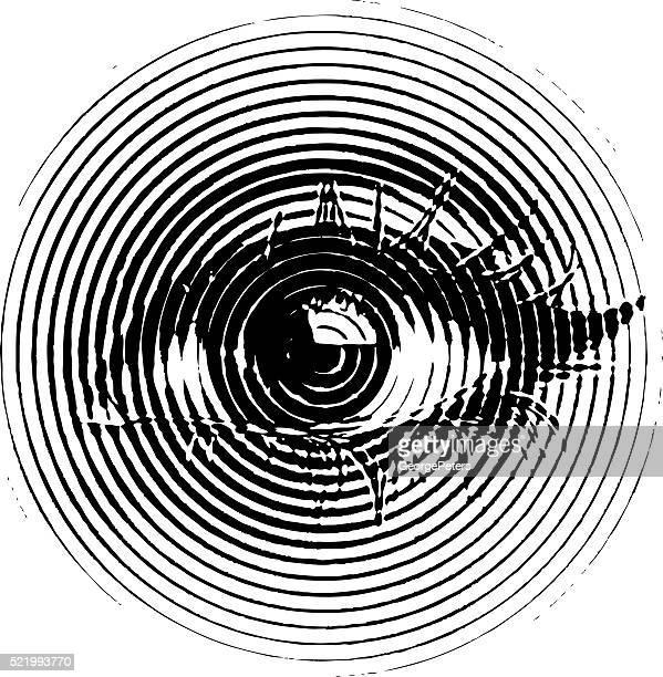 ilustrações, clipart, desenhos animados e ícones de olho, entalhes ilustração - retina globo ocular