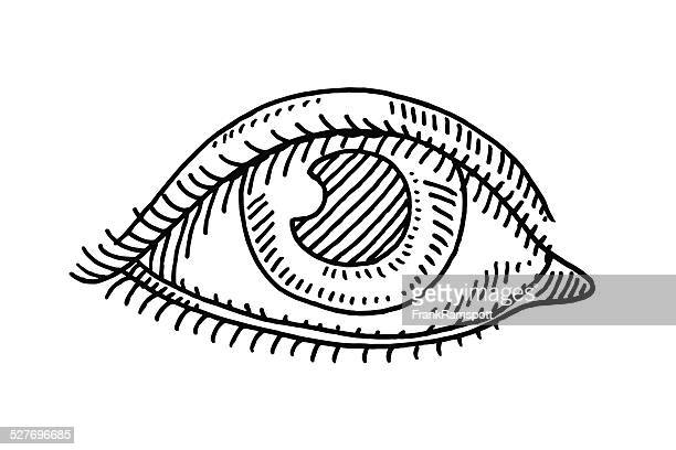 eye symbol drawing - sensory perception stock illustrations