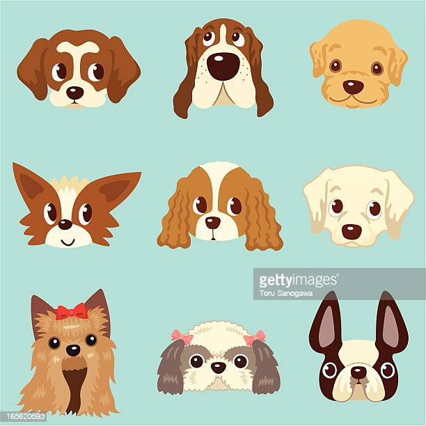 faces of dogs - golden retriever stock illustrations, clip art, cartoons, & icons
