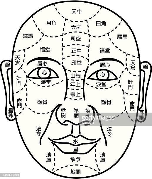 illustrations, cliparts, dessins animés et icônes de soin du visage schéma de prédire l'avenir - chirurgie esthetique
