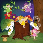 fairies in forest