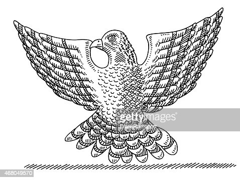 Falcon Bird Spread Wings Drawing stock illustration