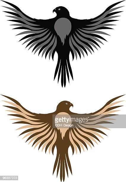 ilustrações de stock, clip art, desenhos animados e ícones de falcão ~ vector - falcon bird