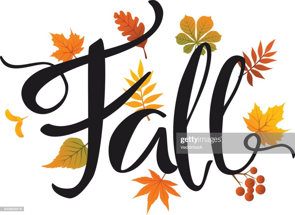 fall leaves foliage background