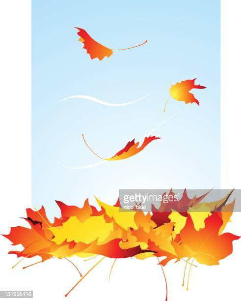 falling leaves - deciduous tree stock illustrations, clip art, cartoons, & icons