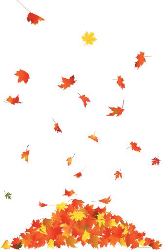 Falling Leaves - gettyimageskorea