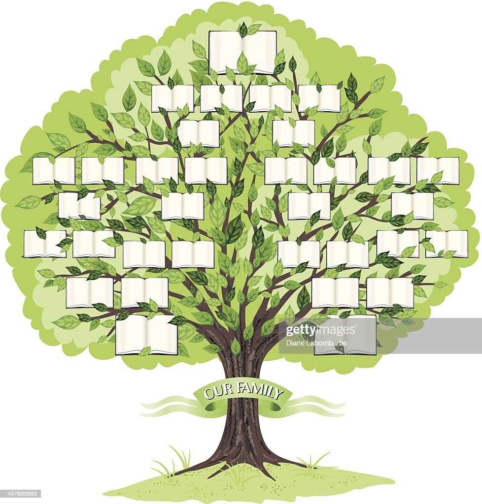family tree stock illustrations and cartoons getty images