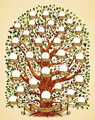 Family Tree template vintage vector illustration