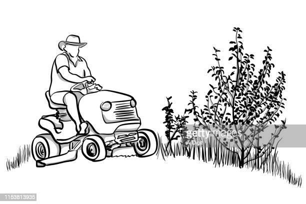 fancy lawnmore - lawn mower stock illustrations
