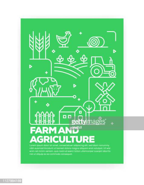 farm and agriculture concept line style cover design for annual report, flyer, brochure. - cow stock illustrations