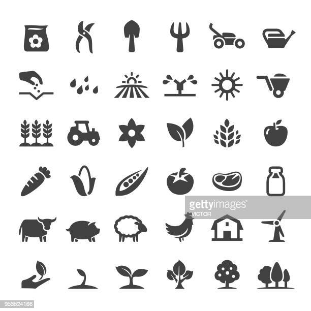 farm and agriculture icons - big series - crop plant stock illustrations