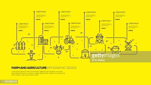 ilustrações de stock, clip art, desenhos animados e ícones de farm and agriculture infographic design - agricultura