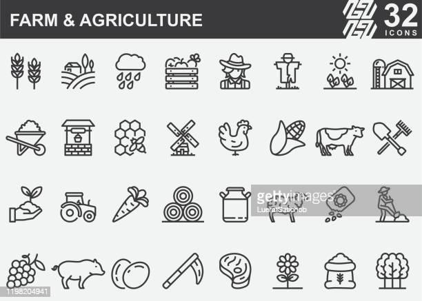 ilustraciones, imágenes clip art, dibujos animados e iconos de stock de iconos de líneas agrícolas y agrícolas - espiga de trigo