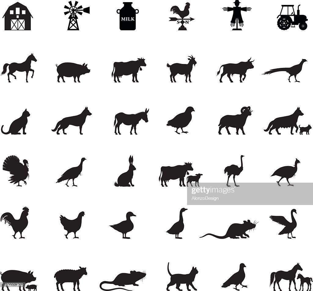 Farm e animais domésticos : Ilustração