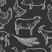 Farm animal background
