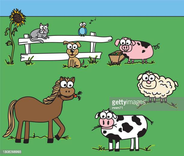 farm animal googly eye doodles - pigs trough stock illustrations