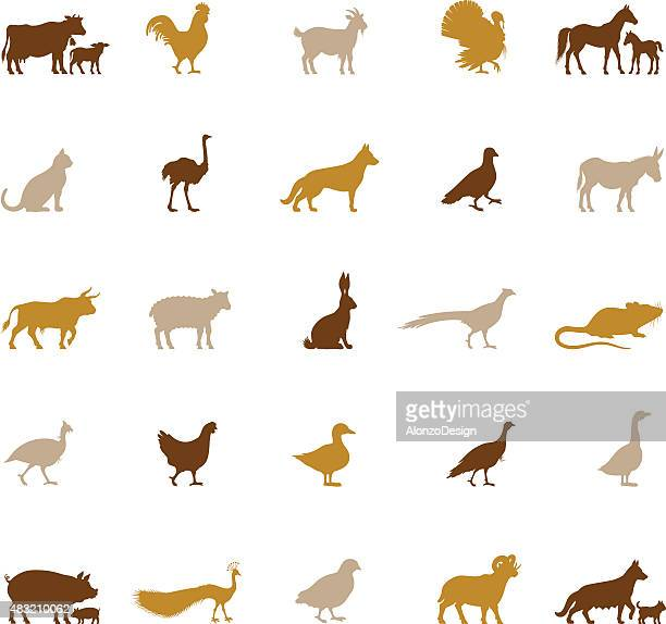 farm animal silhouettes - quail bird stock illustrations, clip art, cartoons, & icons