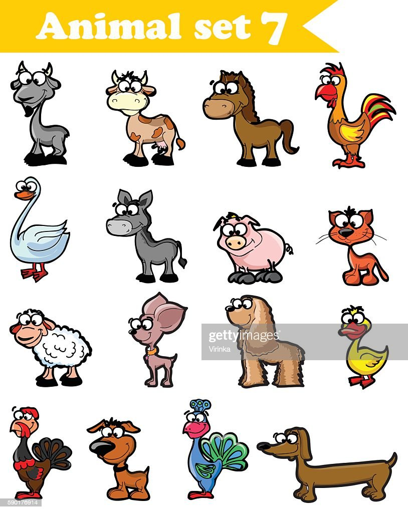 Farm animals and pets