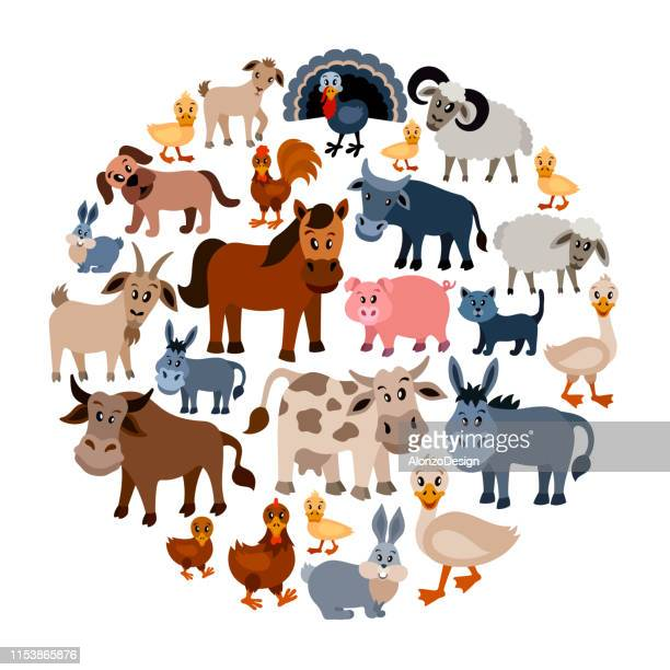 farm animals collage - livestock stock illustrations