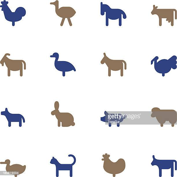 Farm Animals Icons - Color Series
