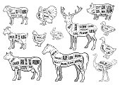 Farm animals icons set. Collection of labels with beautiful such as goat chicken pig boar duck goose horse cow Turkey hare ostrich deer butcher shop, steak house.