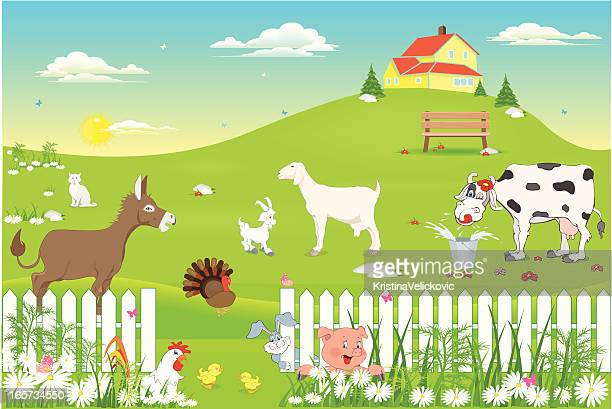 farm animals in nature - donkey stock illustrations, clip art, cartoons, & icons