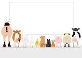 farm animals looking large blank board, rear view
