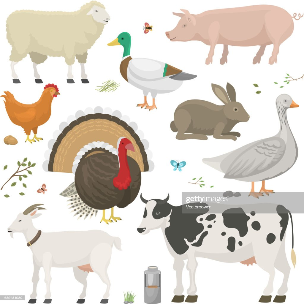 Farm animals set vector.