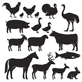 Farm animals silhouette icons.
