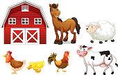 Farm animals
