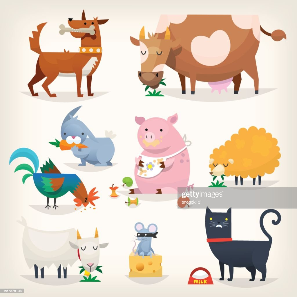 Farm birds and animals