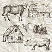 Farm collection. Hand drawn isolated elements.