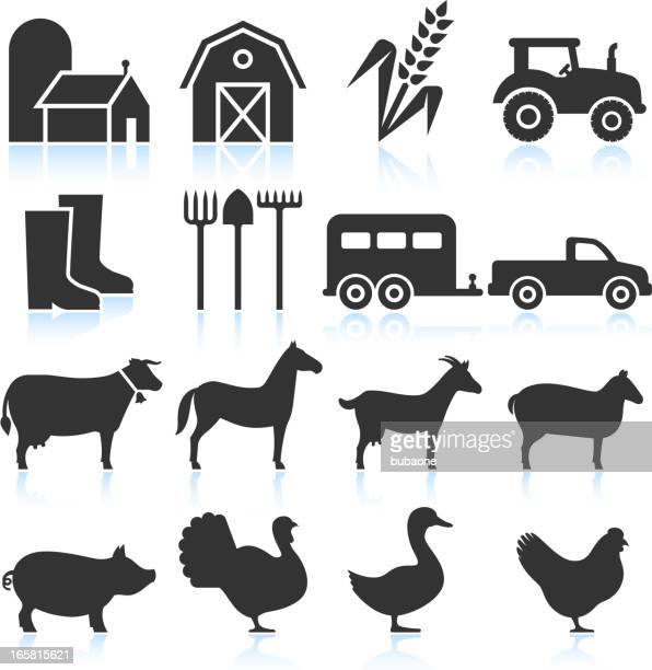 farm equipment and animals black & white vector icon set - livestock stock illustrations