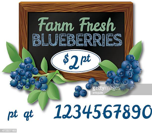 farm fresh blueberries text and sign - blueberry stock illustrations, clip art, cartoons, & icons