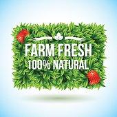 Farm fresh label made of leaves. Vector illustration
