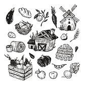 Farm, harvest, vegetables and fruits.