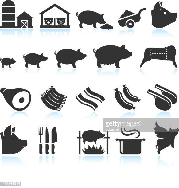 Farm Pig Live Cycle and Food Preparation Set
