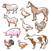 Farm rural and domestic meat animals set
