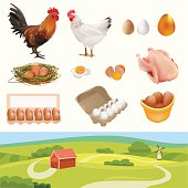 Farm Set with Rooster, Hen and other