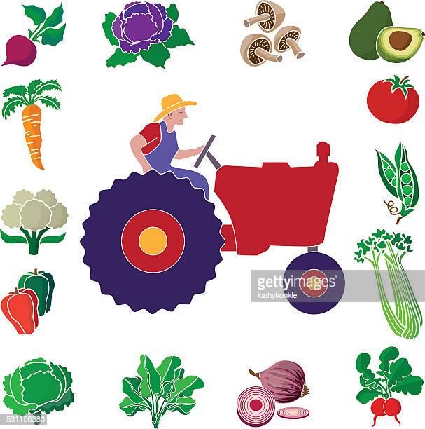 illustrazioni stock, clip art, cartoni animati e icone di tendenza di agricoltore e il trattore con verdura prodotti o design del bordo - cavolo cappuccio verde