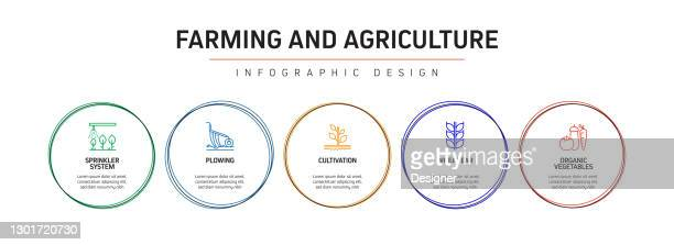 farming and agriculture related process infographic template. process timeline chart. workflow layout with icons - irrigation equipment stock illustrations