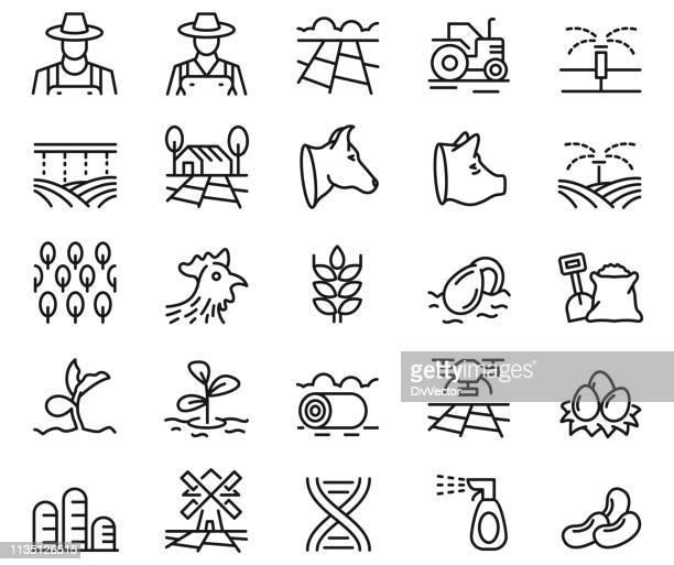 ilustrações de stock, clip art, desenhos animados e ícones de farming icon set - agricultura
