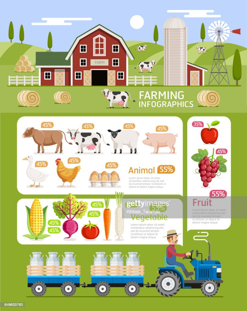 Farming infographic elements template.