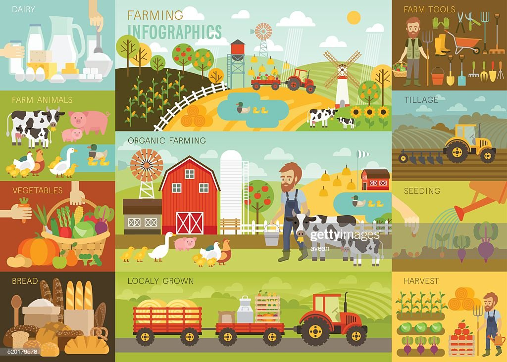 Farming Infographic set with animals, equipment and other objects.
