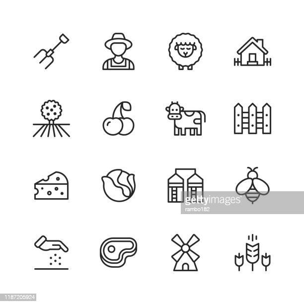 farming line icons. editable stroke. pixel perfect. for mobile and web. contains such icons as farm, agriculture, field, barn, animal, tractor, vegetable, fruit, ecology. - meat stock illustrations