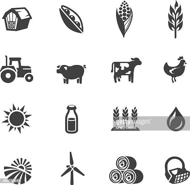 farming symbols - corn stock illustrations, clip art, cartoons, & icons