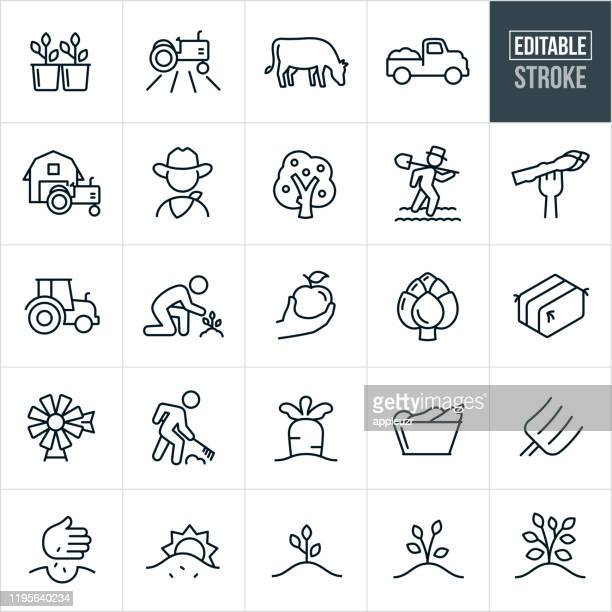 farming thin line icons - editable stroke - cow stock illustrations