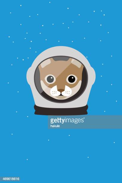Fashion portrait of cat, astronaut cat